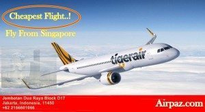 Cheapest Flight Tiger From Singapore