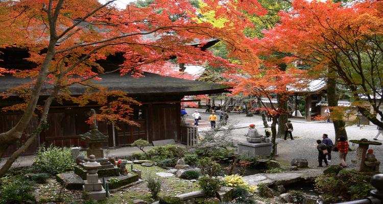 festival-musim-gugur-di-jepang