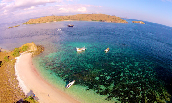 10 Tempat Wisata Indonesai Wajib Dikunjungi Pink Beach Komodo