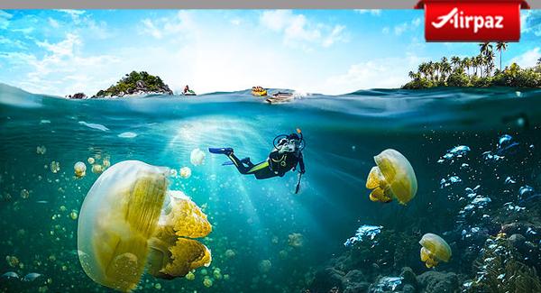 Ini Pulau Tercantik yang Wajib di Kunjungi di Kepulauan Derawan