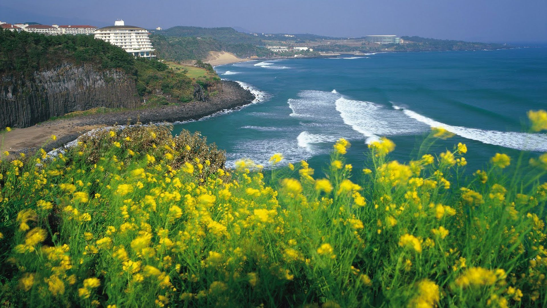 7 Top Attractions In Jeju Island South Korea You Must