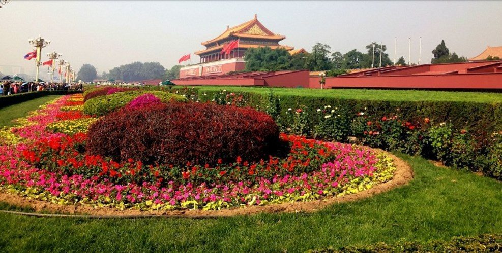 Tiananmen garden flower-forbidden city