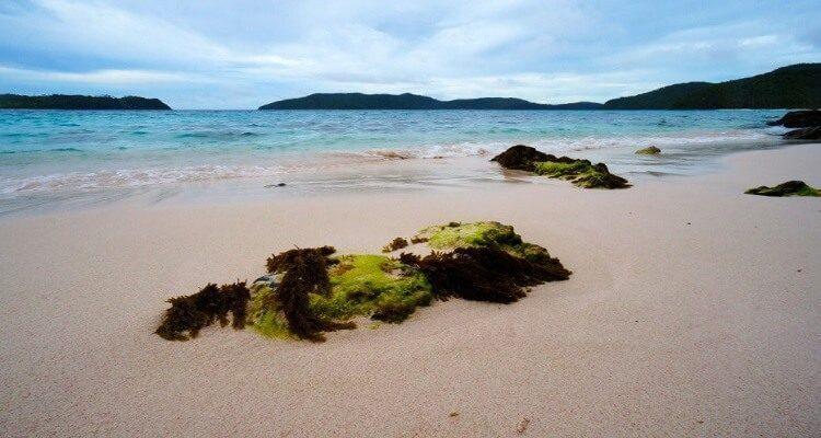 sila-island