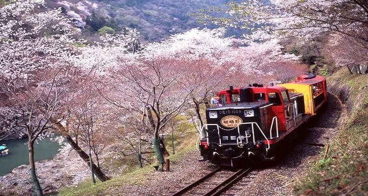 kereta-arashiyama-1