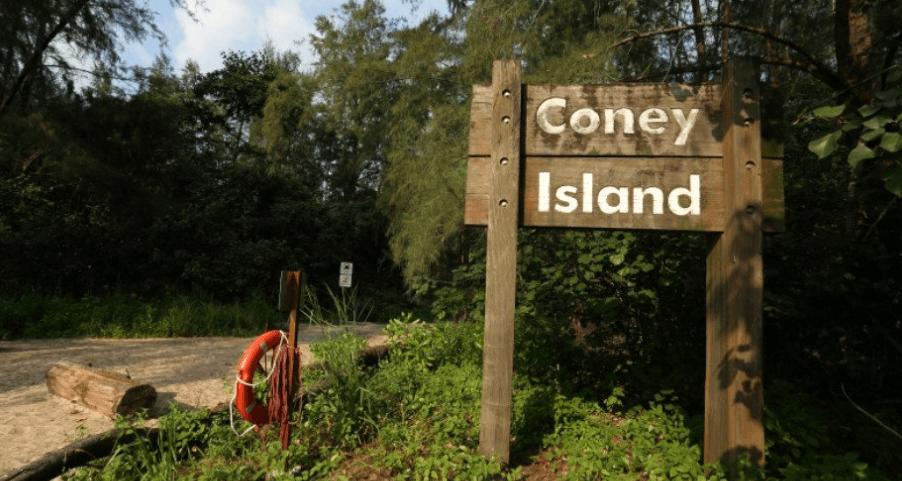 coney-island-park