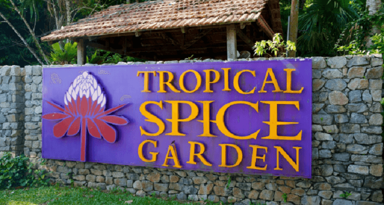 tropical-spice-garden
