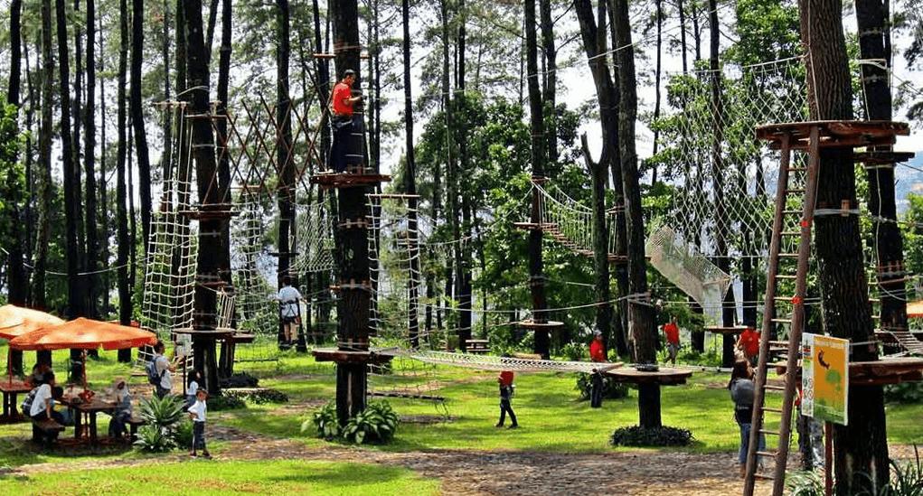 Bandung - Treetop Adventure Park