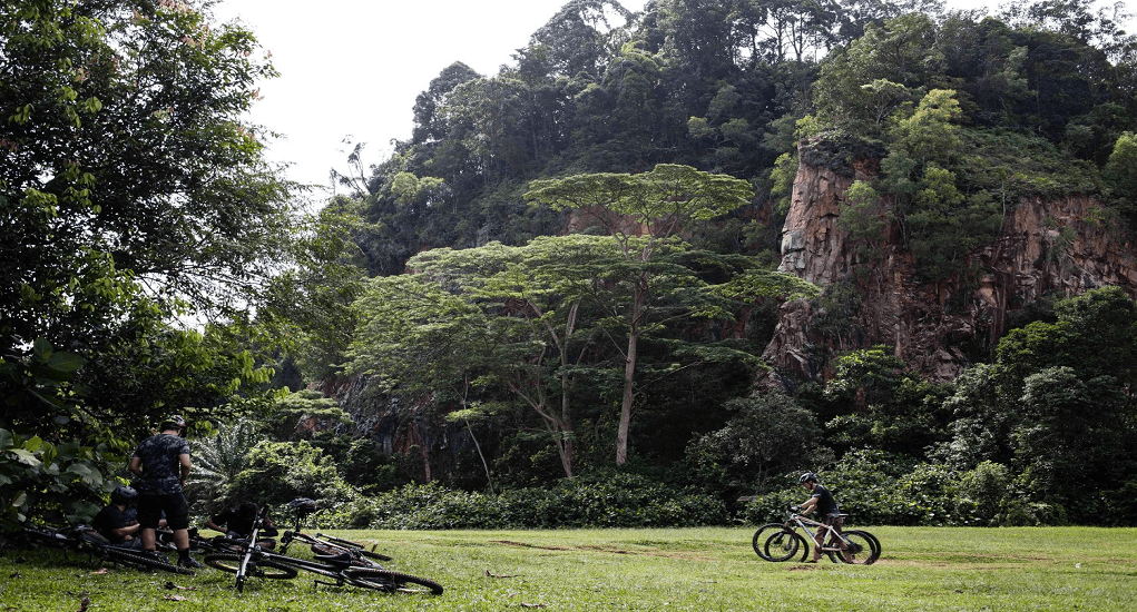 Bukit Timah Nature Reserve - Bersepeda Gunung