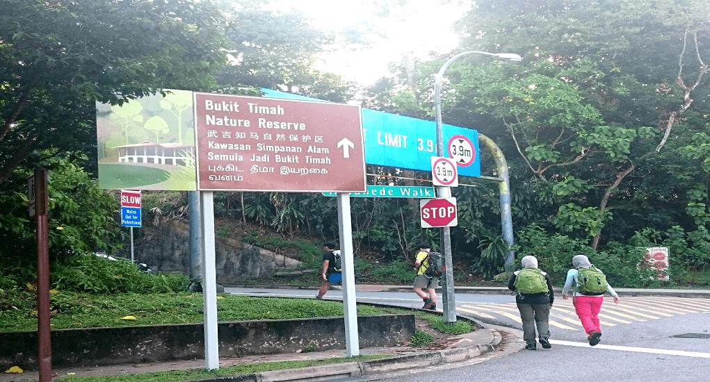 Bukit Timah Nature Reserve - Pendakian