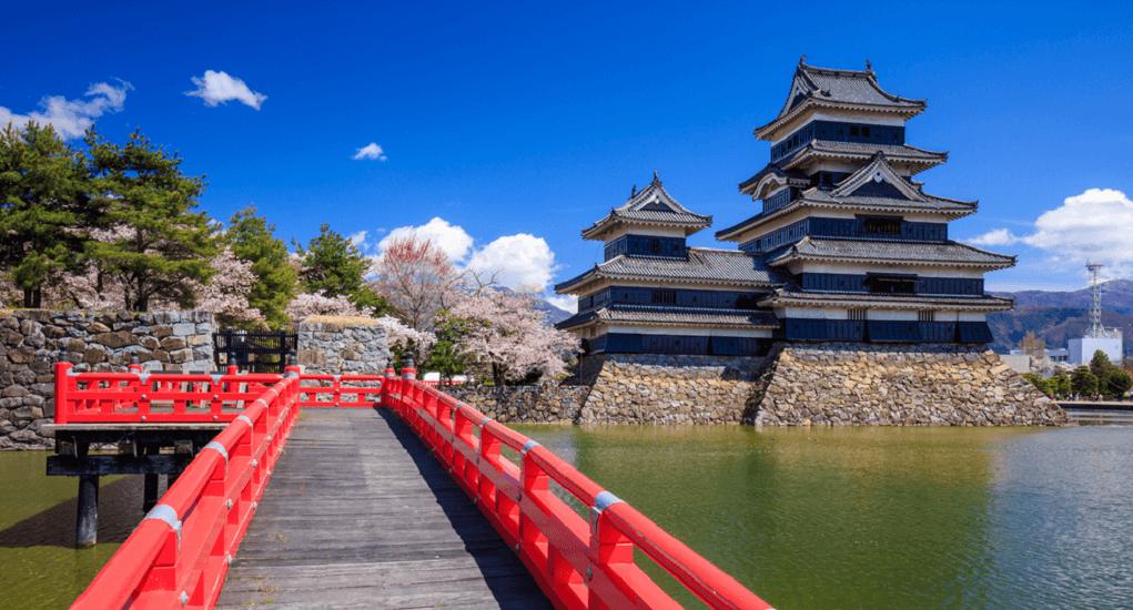 Bunga Sakura - Nagano