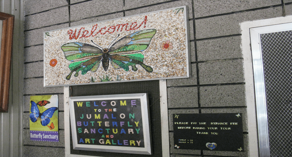 Cebu - Jumalon Butterfly Sanctuary