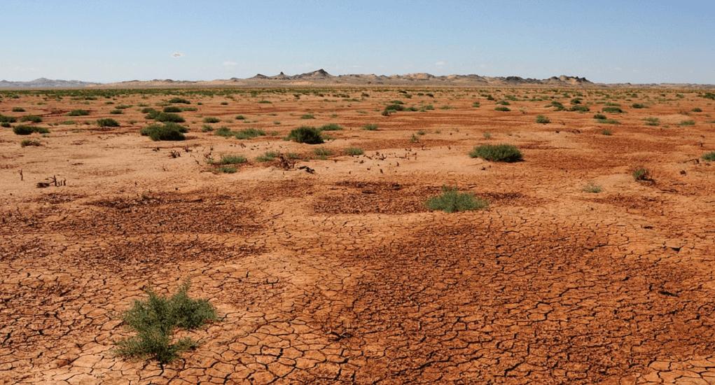 China - Gobi Desert