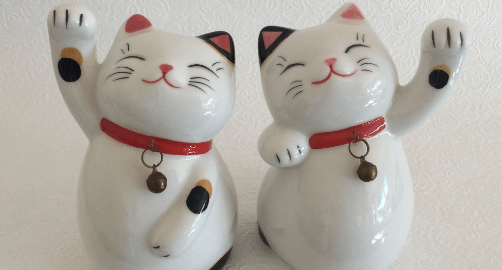 Daiso Harajuku - The cat brings luck