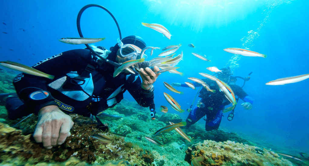 Do in Vietnam - Diving in Nha Trang