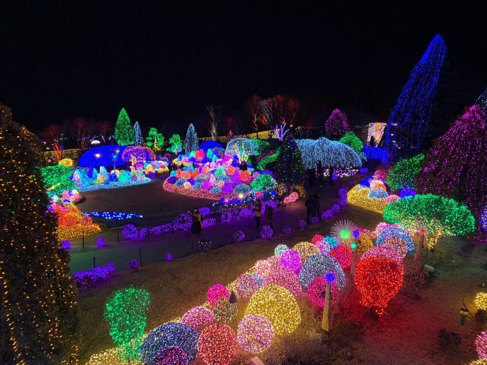 Garden of Morning Calm Lighting Festival 2019