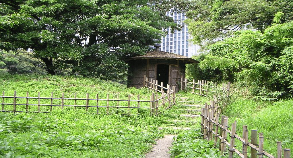 Hamarikyu Park - Kamoba