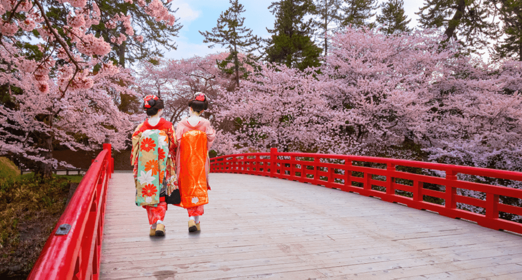 Hanami in Japan - Aomori