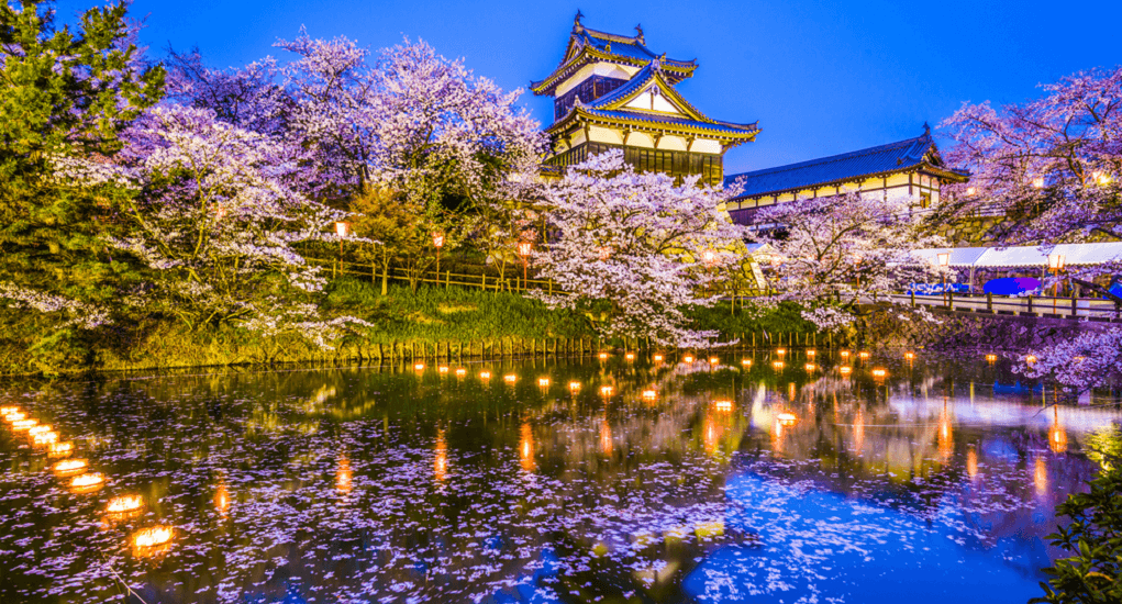 Hanami in Japan - Nara