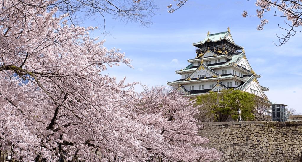 Hanami in Japan - Osaka