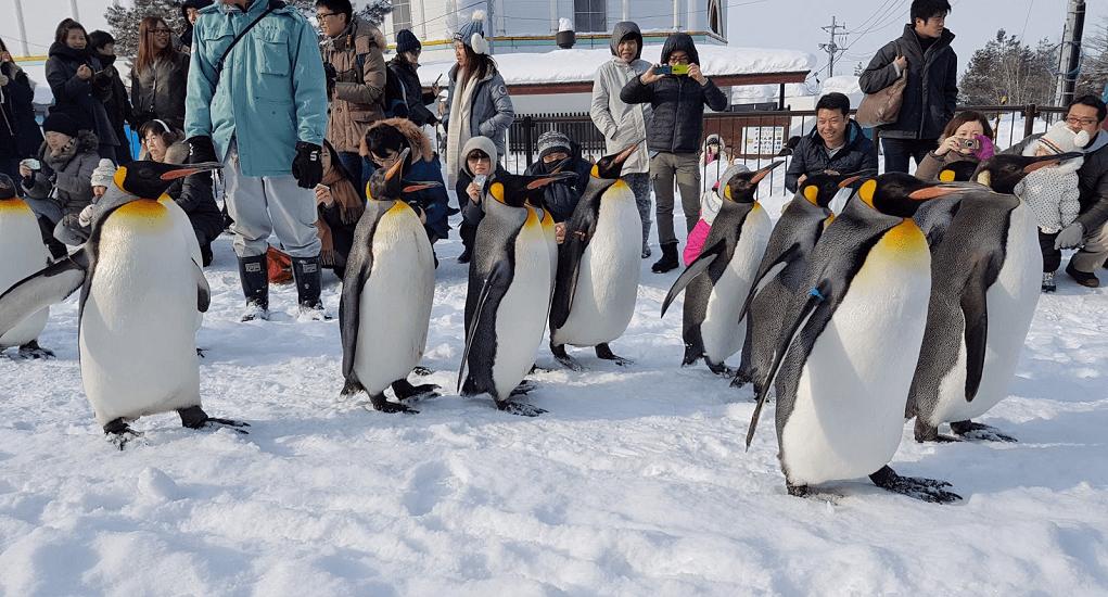 Hokkaido - Akan National Park