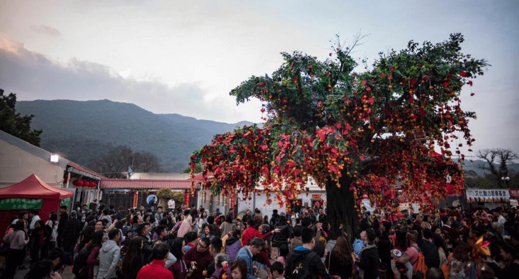 Hongkong - Wishing Trees Lam Tsuen
