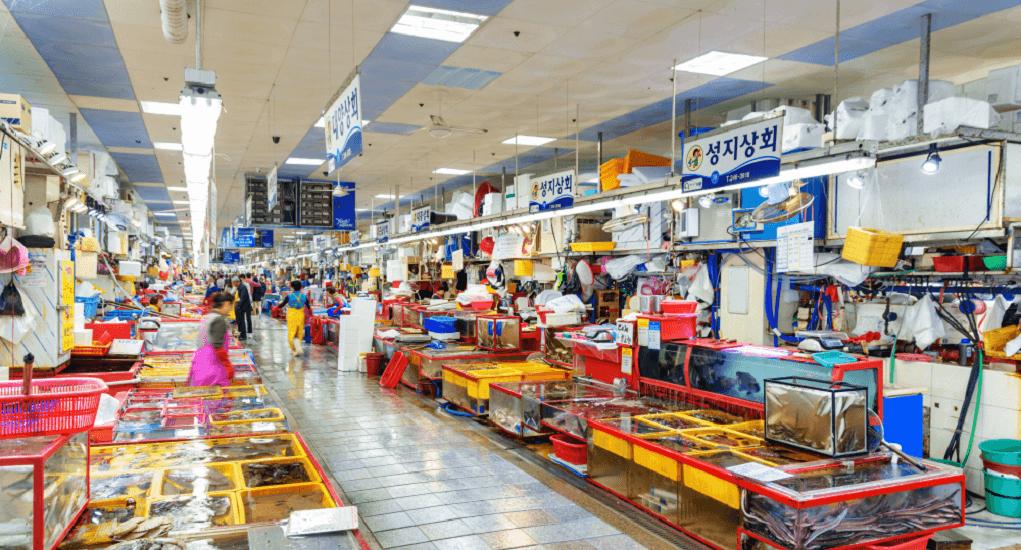 Jagalci Market - Pasar Jagalci Merupakan Landmark Kota Busan