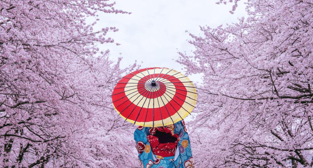 Japanese in spring