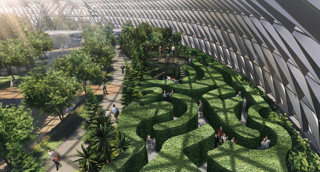 Jewel Changi Airport - Canopy Mazes