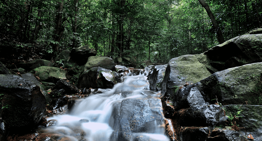 Johor Bahru - The Pulai Waterfall