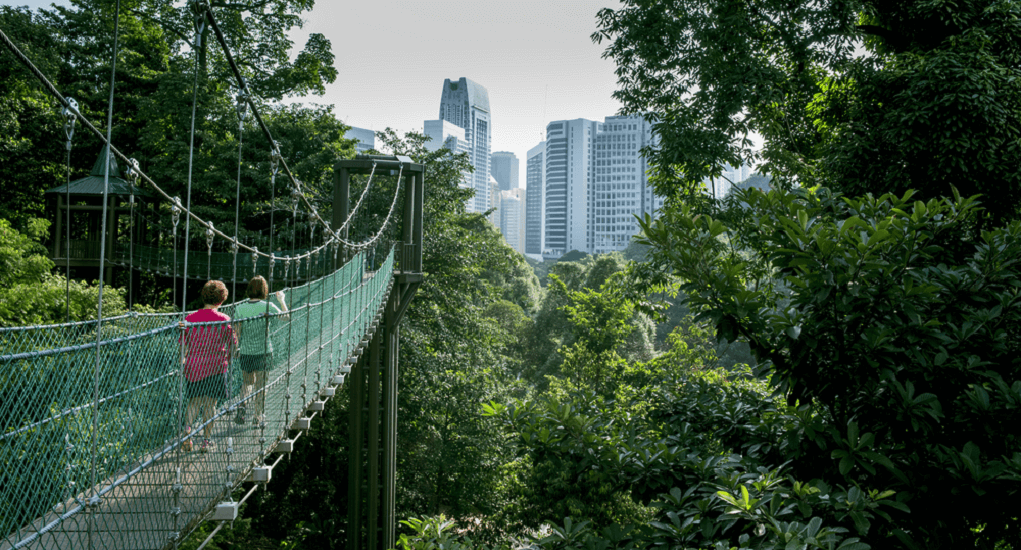 Kuala Lumpur - KL Forest Eco Park