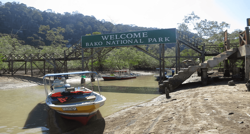 Kuching - Bako National Park