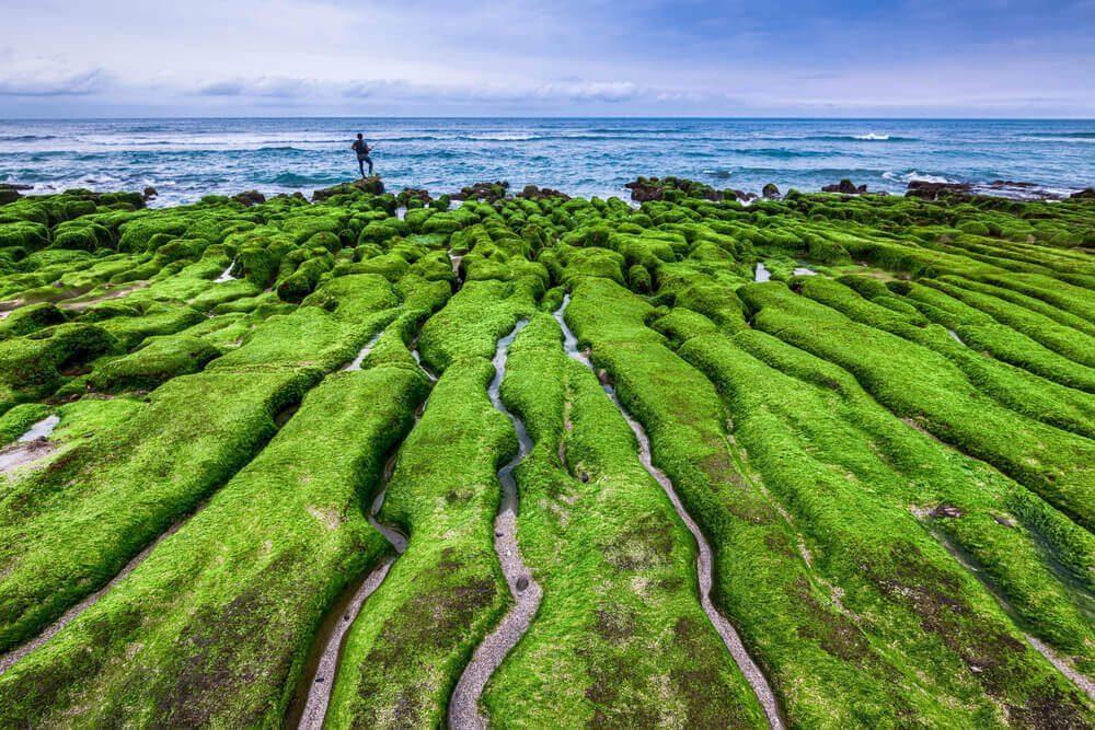 Pemandangan di Laomei Green Reef
