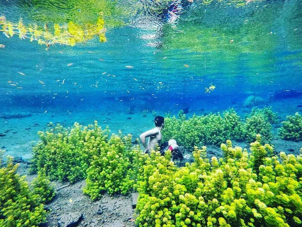 Wisata alam di kota Malang