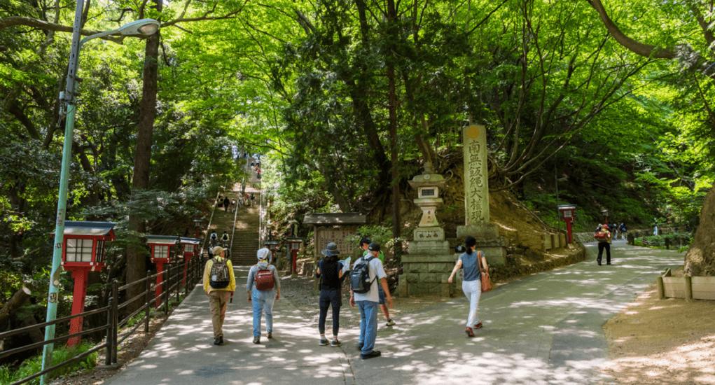 Mount Takao - Hiking trails