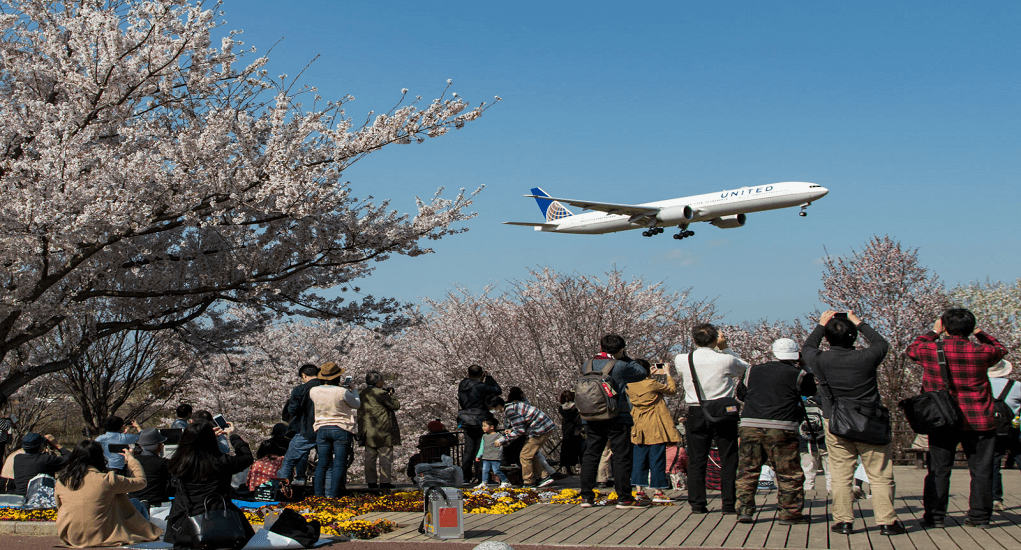 Narita Attraction - Sakura-no-Yama Narita City Park
