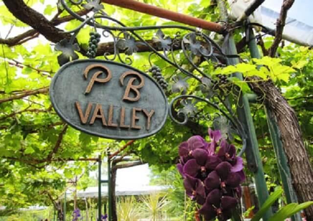 pb wine valley