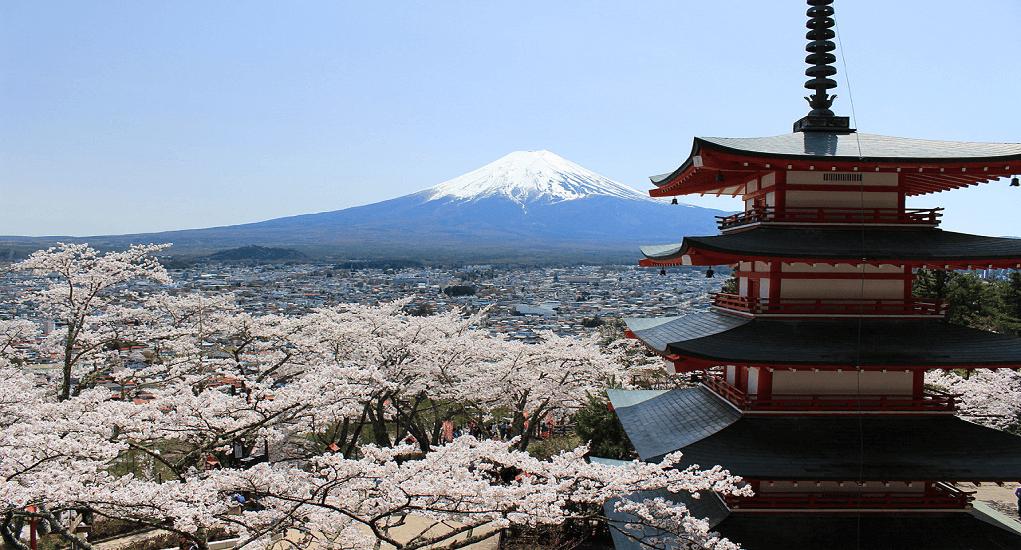 Panduan Traveling Murah ke Jepang - Chureito Pagoda