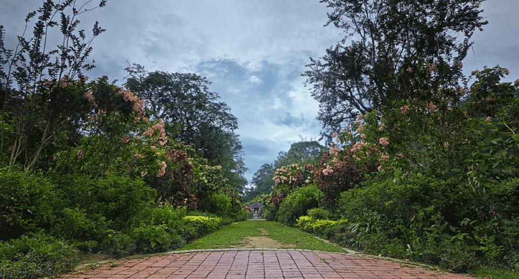 Penang - Penang Botanic Garden