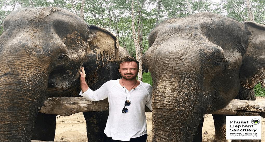 Phuket Destinations Place - Phuket Elephant Sactuary