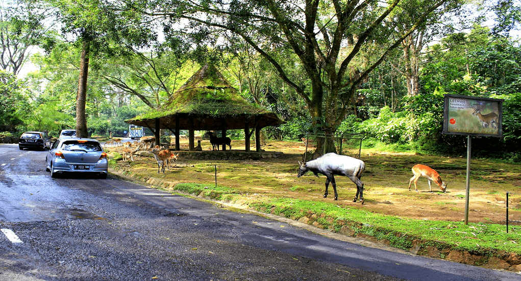 Semarang - Wisata Penggaron