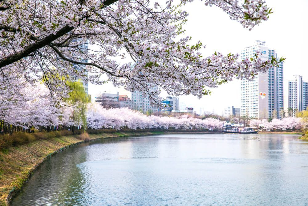 Seokchon Lake