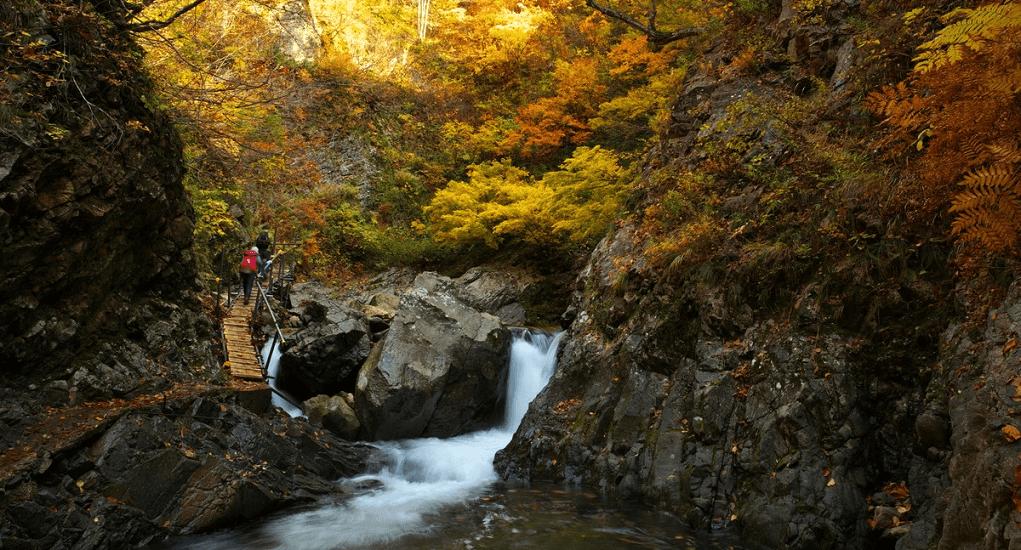 Shirakami Sanchi - Anmon Falls