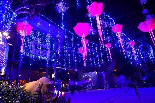 singapore safari night