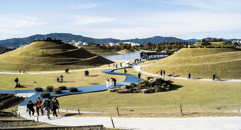 Suncheonman Bay - Different Activities