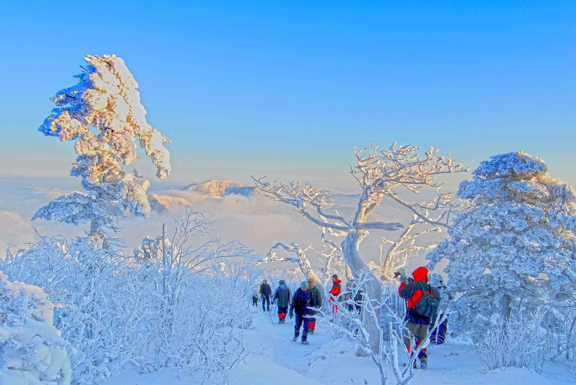 Taebaeksan Mountain Snow Festival 2020