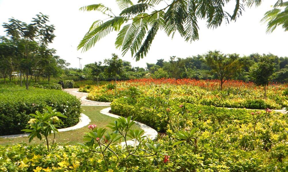 Taman Sakura Surabaya