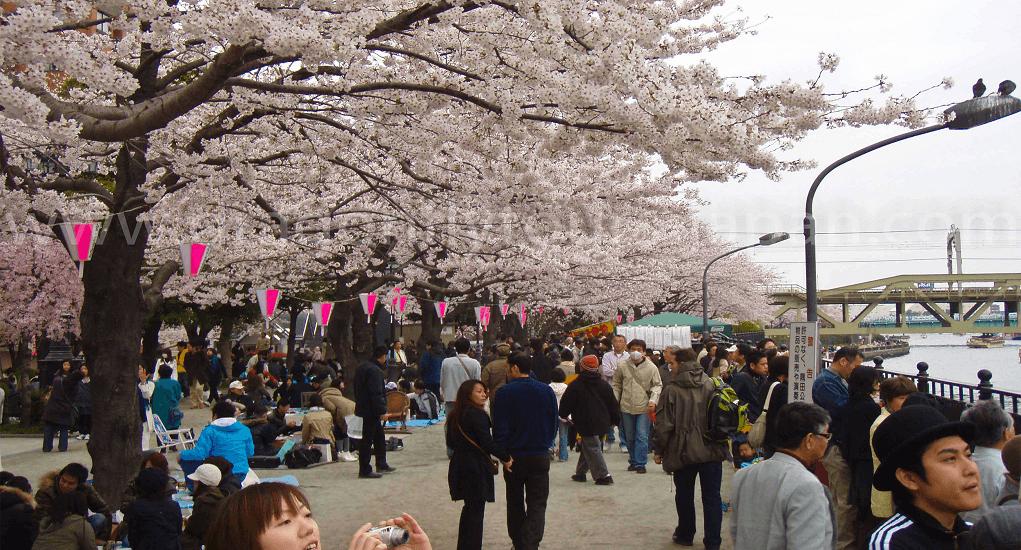 Tokyo - Area Asakusa