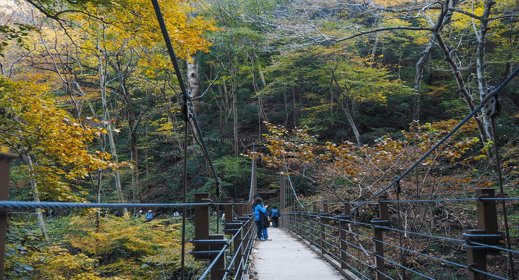 Tokyo - Gunung Takao