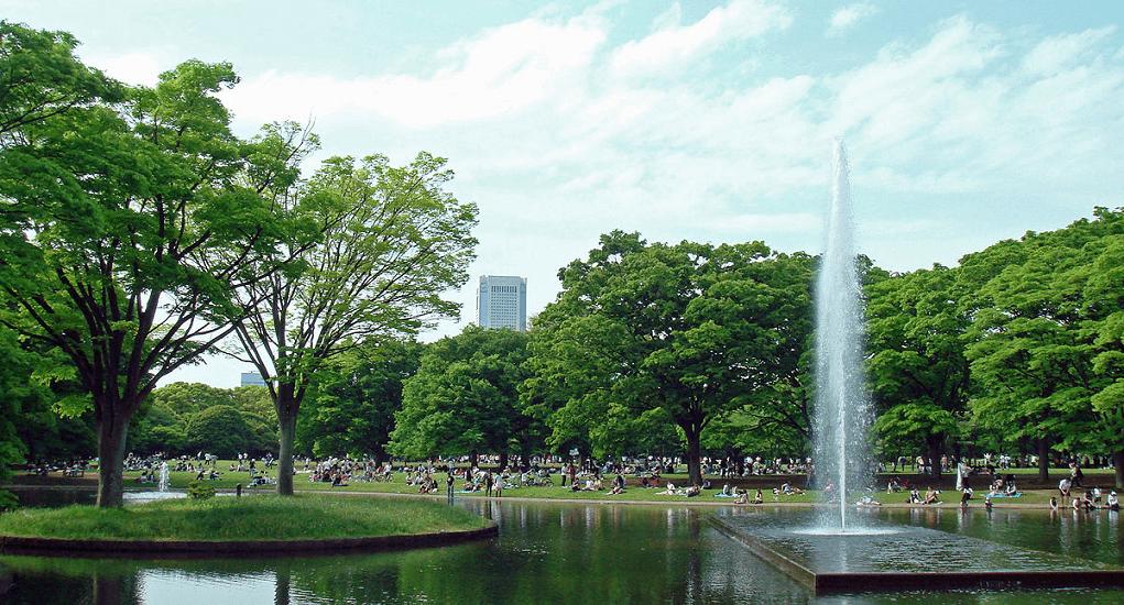 Tokyo - yoyogi park