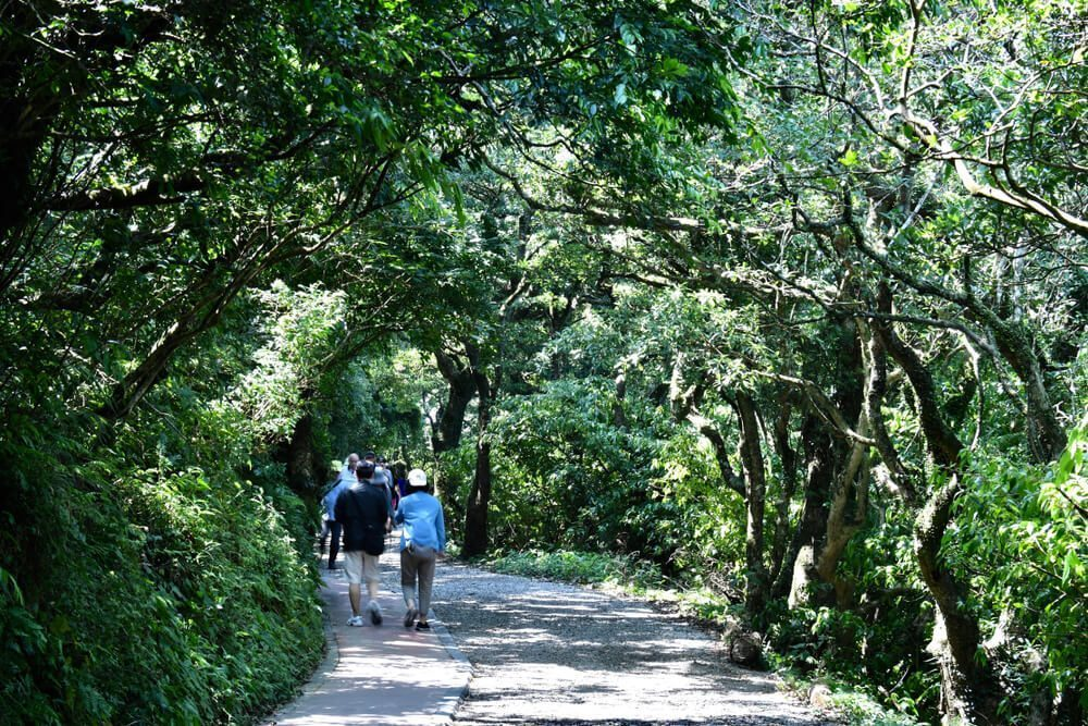 Yang Ming Shan National Park - One of Taiwan's Most Important Lungs
